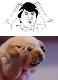 Dogs Similar To Rage Face Memes - humorsharing.com via Relatably.com