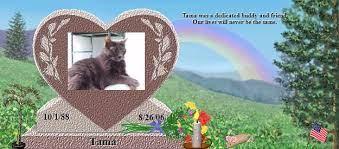 Tama's Rainbow Bridge Pet Loss Memorial