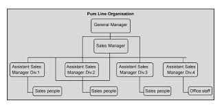 Line Organization Chart Meaning Advantages And Disadvantages