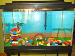 brilliant ideas of best fish images on amazing fish tank decorations of with fish tank decorations