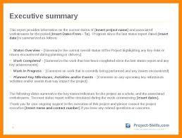 Example Executive Summary Sample – Celebratelife