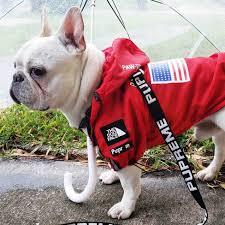 Dog Clothes Adidog French Bulldog ...