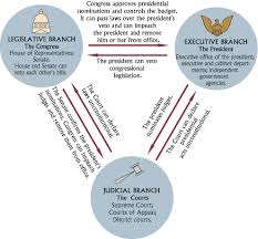 Executive Branch Flow Chart Checks And Balances