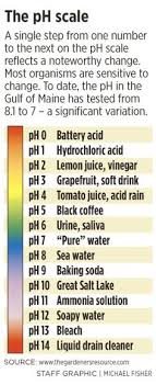 Ph Chart Mesmerizing PH Chart For Acids And Bases OMG Just Went Over Acids And Bases