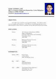 Filipino Resume Sample New Resume Sample Form Pdf Best Cv Format