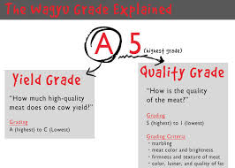 Japanese Beef Grading Chart Behind Wagyu Beef Essential Guide To Japanese Beef Live
