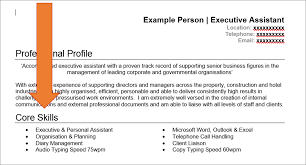 Resumes Profile Section Of Resume Core Skills For Personal Customer