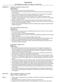 Security Resume Sample New IT Security Consultant Resume Samples Velvet Jobs