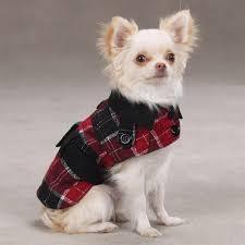 metallic dog trench coat