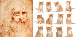 why leonardo da vinci would have aced the internet cat craze image 20160209 12606 1btlj2g