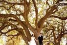 Bay Area Wedding Packages Clubhouse Walnut Creek Wedding Venue