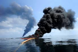 the bp oil spill in the gulf of essay
