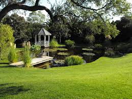 Backyard Ponds Ideas Iranews Garcia Rock And Water Design Blog Very Nice  Garden Pond Cheap Home Decor Online