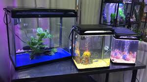 Camry's latest curved corner glass aquarium tanks use the same type of  glass used for car windshields,so our fish tanks are built with strength  and clarity.