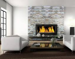 Interior:Elegant Home Living Room Design With Glass Fireplace And White  Leather Sofa Set Ideas