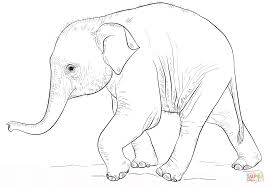 Baby Elephant Coloring Pages Print Printable Coloring Page For Kids
