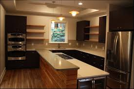 Kitchen Closet Shelving Chic Kitchen Cabinet Shelves Regarding Design Ideas For Kitchen