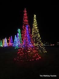 Christmas Yard Decorations  HGTVChristmas Lights In Backyard