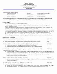 Resume Account Manager Free Download Awesome Account Relationship