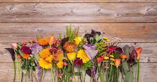 Autumn Flowers Australia. Autumn is one of the most beautiful… | by Allan  Olmedo | Medium