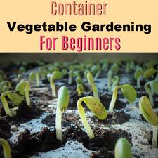 container vegetable gardening for