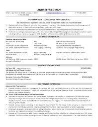 andrej friedman sql developer resume - Sql Developer Resume