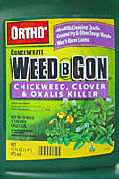 oxalis weed killer.  Weed Orthos Weed B Gon Chickweed Clover And Oxalis Killer Is Effective  Against Groundivy When Applied On