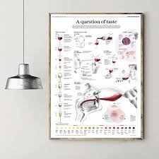 Wine Taste Chart A Question Of Taste Wine Chart Art Canvas Poster Prints Home Wall Decor Painting 20x30 Inches