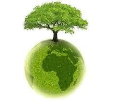 Znalezione obrazy dla zapytania konkurs edukacji ekologicznej