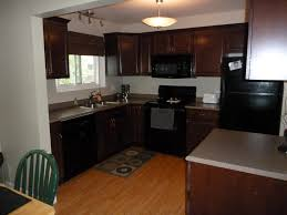 Kitchens With Black Appliances Fascinating Black Kitchen Cabinets With Black Appliances About