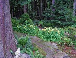 Small Picture 42 best Garden Design images on Pinterest Garden ideas