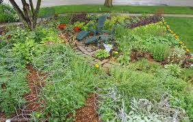 Small Picture Design ideas for front yard fruit and vegetable gardens