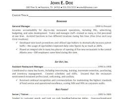 Geek Squad Resume Example Examples Of Resumes