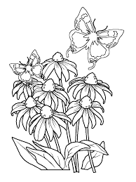 Butterfly And Flower Coloring Pages For Adults Blata
