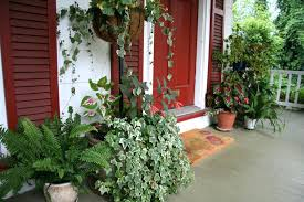 interior front porch plants for fall patio ideas morning sun shade plant best home depot best porch plants