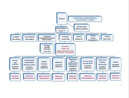 Ge Organizational Chart Officers Only Page Ragehcc