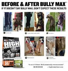 Bully Max Feeding Chart Best Picture Of Chart Anyimage Org