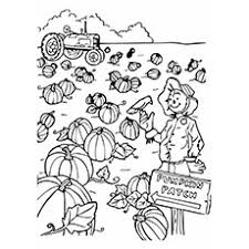 Pumpkin Patch Coloring Pictures Coloring Pages Ideas