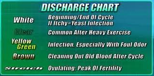 Your Guide To Vaginal Discharge