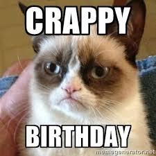 Sad Birthday Cat Meme Generator - sad birthday cat meme generator ... via Relatably.com