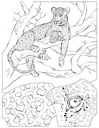 Small Picture Leopard coloring page Animals Town Free Leopard color sheet