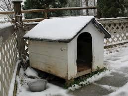 insulated white doghouse