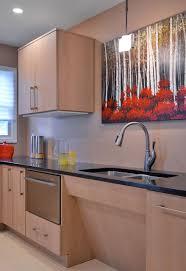 Handicap Accessible Kitchen Cabinets Universal Home Design Vs Handicap Accessible Home Design Universal