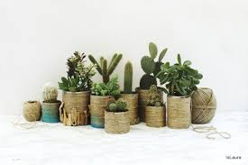 DIY Tin Can Planters Using Twine And Paint