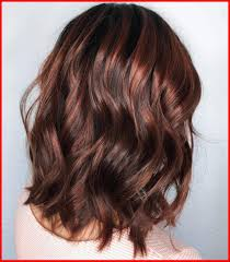 Hair Color Dark Red Brown Hair Color With Highlights Ideas