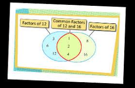 seventh grade venn diagram