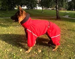 Euro Dog Designs Coupon Code Custom Made Dog Full Body Raincoat Dog Coats Snow Suit