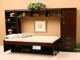 furniture astounding design hideaway beds. Bedroom Cool Murphy Bed Design For Astonishing Interior Nyc And Dark Brown Furniture Astounding Hideaway Beds O