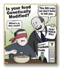 help to get gmos labeled labelgmos org eat organic know thy   help to get gmos labeled labelgmos org