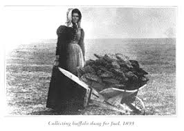 pioneer woman 1800s cooking. the first of their 14 children, a daughter named gertrude, came down with malaria. idella took her everywhere to try find cure. pioneer woman 1800s cooking